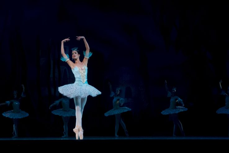stable ballerina